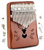 Kalimba Thumb Piano 17 Keys, Portable Finger Piano Musical Instruments Piano Gifts for Kids Adults Beginners