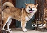 2022カレンダー ドッグズアルバム「柴犬」 ([カレンダー])