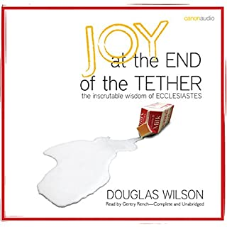 Joy at the End of the Tether audiobook cover art