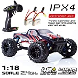 EP EXERCISE N PLAY RC Car, Remote Control Car, Terrain RC Cars, Electric Remote Control Off Road Monster Truck, 1:18 Scale 2.4Ghz Radio 4WD Fast 30+ MPH RC Car, with 2 Rechargeable Batteries