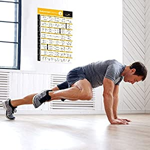 """Bodyweight Exercise Poster - Total Body Workout - Personal Trainer Fitness Program - Home Gym Poster - Tones Core, Abs, Legs, Gluts & Upper Body - Improves Training Routine (18"""" x 27"""", Vol 2)"""