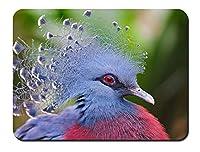 ビクトリアは、ピジョン、青い羽を戴冠 パターンカスタムの マウスパッド 動物 (22cmx18cm)
