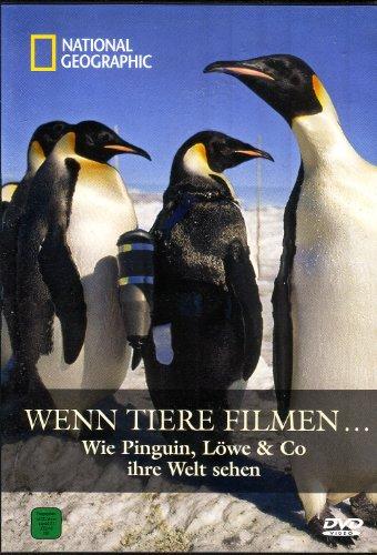 Wenn Tiere Filmen / Wie Pinguin, Löwe & Co ihre Welt sehen / National Geographic