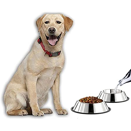 Pets Empire Combo Offer Dog Feeding Bowl Steel (X-Large) 2800 ml Pack of 2