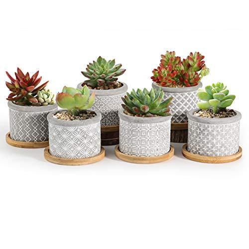 T4U 6cm Zement Sukkulenten Töpfchen mit Untersetzer Rund 6er-Set, Beton Mini Blumentopf mit Muster für Kaktus Miniaturpflanzen