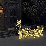 GOTOTOP Decoración luminosa navideña con trineo y reno con red de 216 LED, reno y trineo, decoración navideña para exteriores