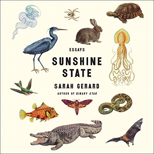 Sunshine State audiobook cover art