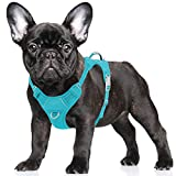 BARKBAY No Pull Dog Harness Large Step in Reflective Dog Harness with Front Clip and Easy Control Handle for Walking Training Running with ID tag Pocket(Blue,S)