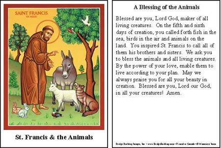 Vermont Christmas Company St. Francis Blessing of The Animals Prayers Cards Set of 100