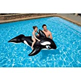 Intex Whale Inflatable Pool Ride-On, 76' X 47', for Ages 3+