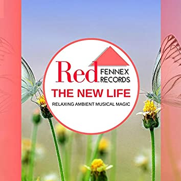 The New Life - Relaxing Ambient Musical Magic