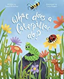 What Does a Caterpillar Do?: 4 (The What Does) ant Oct, 2020