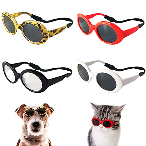 Best sunglasses for dogs