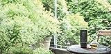 Yamaha LSX-70 – Designobjekt und Bluetooth-Lautsprecher in einem - 5