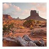 Vliestapete Monument Valley Navajo Tribal Park Arizona Fototapete 240x240cm