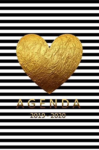 agenda 2019-2020: agenda 2019-2020 semanal del 1 de julio del 2019 al 31 de diciembre del 2020 ideal para regreso a clase