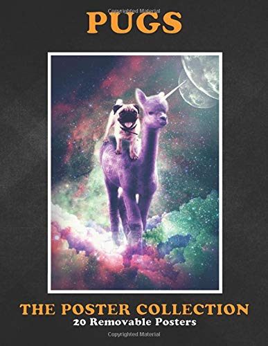 Poster Collection: Pugs Pick Up This Crazy Funny Galaxy Pug On Alpaca Unicorn D Animals
