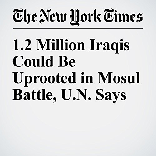 1.2 Million Iraqis Could Be Uprooted in Mosul Battle, U.N. Says cover art