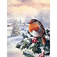 5Dダイヤモンド絵画動物の鳥フルドリルダイヤモンド刺繡ラインストーンの風景の写真家の装飾ギフト