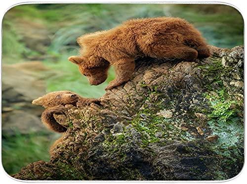 CONICIXI Mikrofaser-Geschirr-Trockenmatte Bär Braunstein Grizzly Wald Kantabrien Spanien Bokeh Braunbär Süße Bären Tier saugfähig,wendbar,für Küchenarbeitsplatten und Spülen 40.6x45.7cm