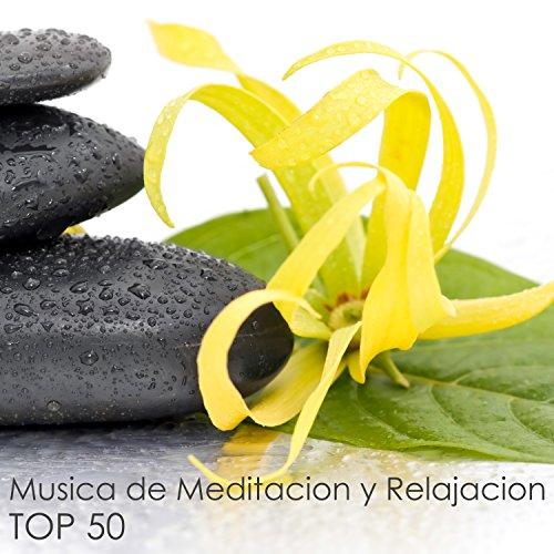New Age (Musica Relajante de Meditacion