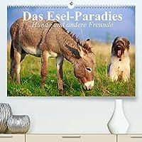 Das Esel-Paradies - Hunde und andere Feunde (Premium, hochwertiger DIN A2 Wandkalender 2022, Kunstdruck in Hochglanz): Die lustigen Abenteuer eines kleinen Esels mit seinen Freunden (Geburtstagskalender, 14 Seiten )