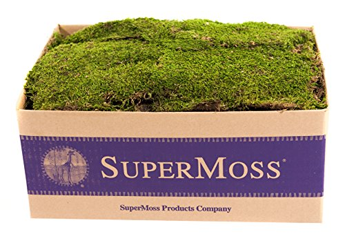 SuperMoss (21508) Preserved Sheet Moss, Fresh Green, 5 Pounds