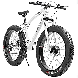 The 5 Best Fat Tire Bikes 15