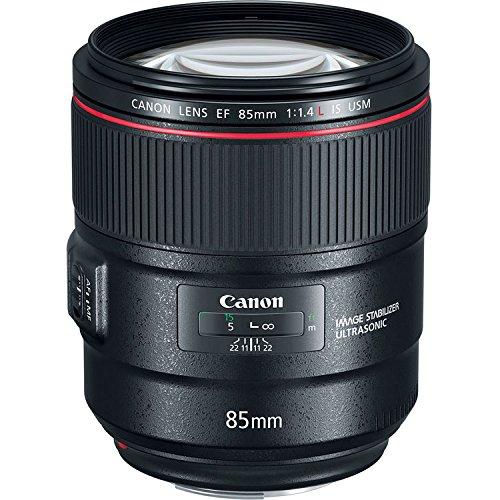 Canon EF 85mm f/1.4L is USM Lens 12PC Accessory Bundle – Includes Manufacturer Accessories + 3PC Filter Kit (UV + CPL + FLD) + More