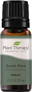 Plant Therapy Scots Pine Essential Oil 10 mL (1/3 oz) 100% Pure, Undiluted, Therapeutic Grade
