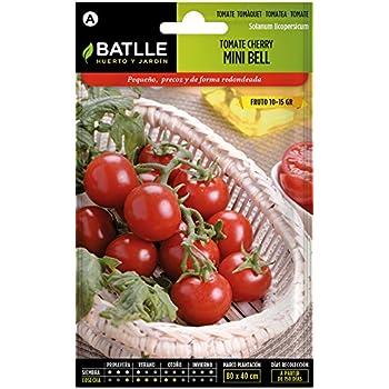 Semillas Hortícolas - Tomate Cocktail tipo Cherry - Batlle: Amazon ...