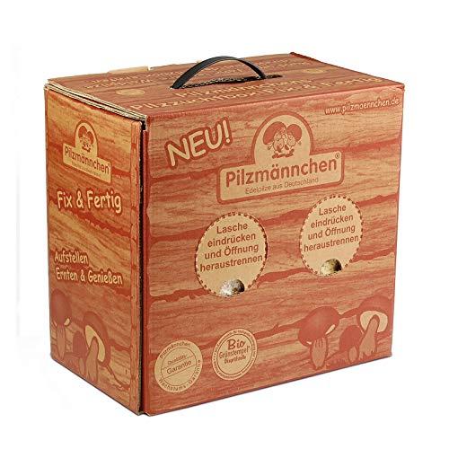 BIO-Pilzzuchtbox - Austernpilz - Pilzzucht