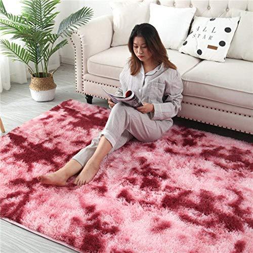 Europese lang haar mode slaapkamer tapijt erker bed mat wasbare persoonlijkheid deken gradiëntkleur woonkamer tapijt, 8200 x 300 cm