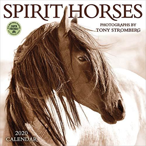 Spirit Horses 2020 Wall Calendar