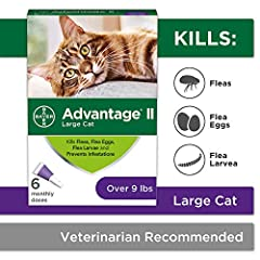 Packaging may vary Contains 6 one month applications of Bayer Advantage II topical flea prevention and treatment for large cats 9 pounds and over Advantage II works through contact, so fleas don't have to bite your cat to die This effective flea trea...