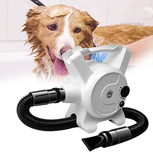 Honden droger, Blaster blower wind Krachtige traploze regeling met het verwarmen van 3.2HP / 2400W
