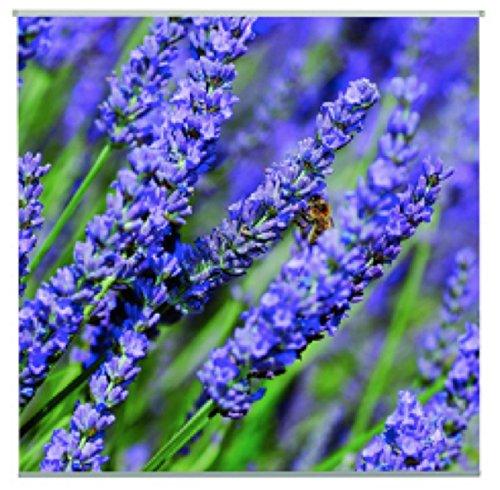 AS4HOME Outdoor Textilposter Lavendula Lavendel Poster aus Stoff ca 95 x 95 cm Ladendeko