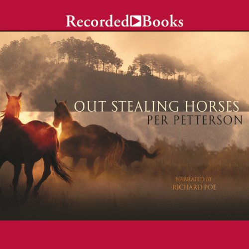 Out Stealing Horses  audiobook cover art
