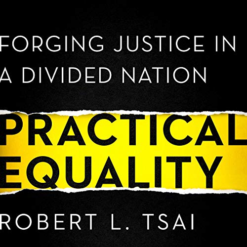 Practical Equality  By  cover art