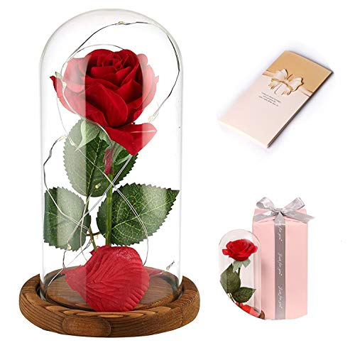 Anaoo Rosa Bella y la Bestia Regalo Navidad para Mujeres, Madres, Novia, San Valentin, cumpleaños, Boda, Aniversario, con una cúpula de Cristal sobre la Base, con Una Tarjeta