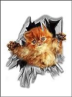 【覗く子猫】 白マット紙(フレーム無し)A2サイズ