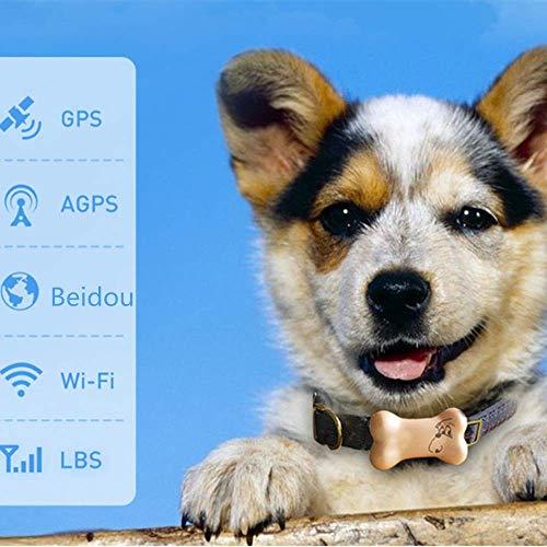 Rastreador GPS para Mascotas Rastreo De Mascotas Localizador Inteligente Anti-Perdida Rastreador De Mascotas De La Comunidad Rastreador Virtual para Mascotas Rastreador para Caminar Puntos De Interés