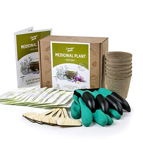 Medicinal Herb Seed Growing Kit - Grow Your Own Indoor Gardening Gift - Herbal Tea Herbs Starter Kit...