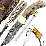 Pocket Knife ram...image