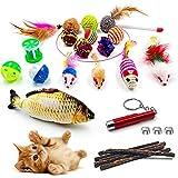 GaiusiKaisa Katzenspielzeug Set 23 Stücke Lustige Ausübung Katze Interaktives Spielzeug Kätzchen mit Matatabi, Federn, Katzenangel,Bällen, Spielmäuse, Fisch,Laser-Pointer für Katze mit Box (23pcs)