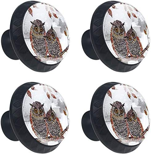 4 Pack Round Kitchen Cabinet Knobs Fort Worth Mall Kansas City Mall Snow 1- Owl Love Storm Pulls