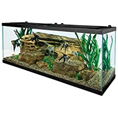 "LARGE ENVIRONMENT: Larger environments can house more fish or a greater variety of fish. Maintains water temperature. Essential for tropical fishkeeping KIT INCLUDES: one 55 gallon tank, EasyBalance Plus, TetraMin, AquaSafe, 6"" fish net, 200W heater,..."