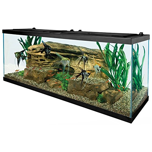 Tetra 55 Gallon Aquarium Kit with Fish Tank, Fish Net, Fish Food, Filter, Heater...