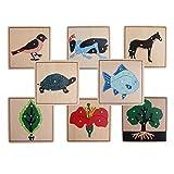 Fenteer 8 Montessori Animal Plant Shape Puzzles para Niños Aprendizaje Temprano Juguetes Educativos De Madera