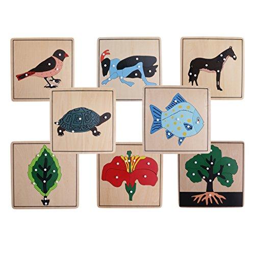 MagiDeal Montessori Materiale Botanico Pianta Aninale Puzzle per Bambini Giocattoli Educativi Precoci